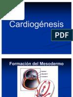 Embrio Sem 12 Cardiogénesis