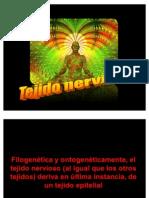 Histo Sem 6 Nervioso2