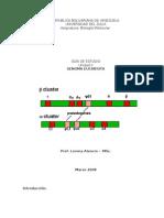 Genoma Eucariota Guia Estudio 2008