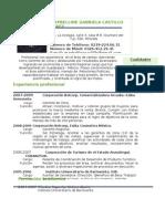 Curriculum Maybelline Castillo