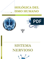 611basesbiologicas-091018223000-phpapp02
