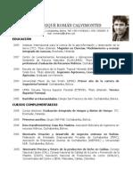 CV Carlos EnriqueRomanCalvimontes