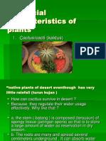 Characteristics of Plants