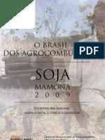 o Brasil Dos Agrocombustiveis v4