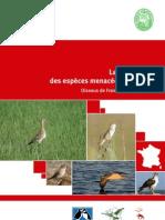 Liste_rouge_France_Oiseaux_de_metropole