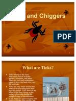 Chiggers- Slide Show Presentation