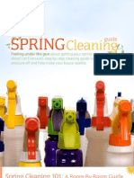 Spring Cleaning eBook Draft 033009