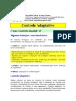 Controle_Adaptativo_Introducao