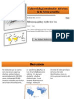 Molecular Epidemiology of Yellow Fever Virus