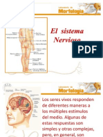 nervioso_1_
