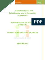 GELES_MODULO_I