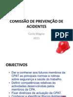 COMISSÃO DE PREVENÇÃO DE ACIDENTES Carla