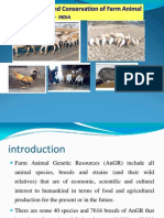 Ramu Conservation