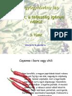 Fűszerek 3. füzet Flora, gyógynövény lap