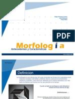 Morfologia Expo