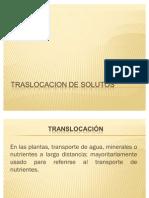 TRASLOCACION DE SOLUTOS