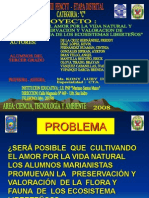 Diapositivas Proyecto Fencyt Luby 2008