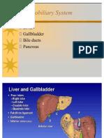 Hepatobiliary System