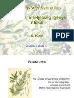 Fűszerek 4. füzet. Flora, gyógynövény lap