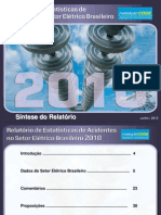 Sintese_Relatorio_2010