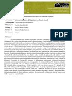 Uso de Resíduo Industrial no Cultivo de Plantas de Girassol