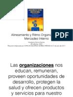 Alineamiento y Ritmo Organizacional