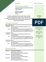 Curriculum Vitae Modelo4c Verde