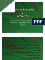 Ponencia Derechos Humanos Con Relacion Con El Medio Ambiente