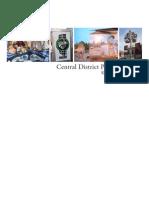 Central District Public Art Plan FINAL