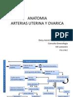 Arterias Uterina y Ovarica
