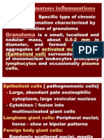 Granulomatous Inflammation 4 (2)