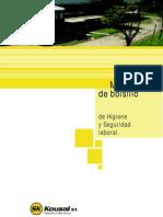Mannual de Seguridad Empresa Argentina METALURGICA