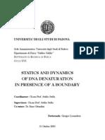 Tesi Ph.D.