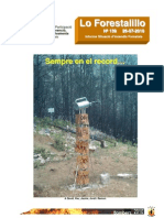Forestalillo 139