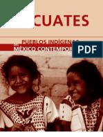 Grupo Indigena de Oaxaca