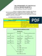 Cetoacidosis Diabetica Actuacion Enfermeria