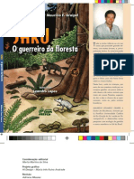 Editoração da 2ª Edição do Livro Saru, O Guerreiro da Floresta