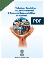 National Voluntary Guidelines 2011 12jul2011