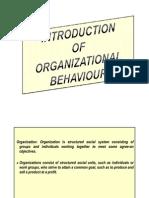 Introduction to Organizational Behavior