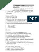 revisão_pires