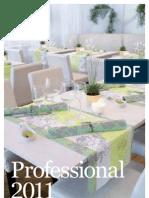 Professional 2011