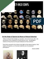 5.1 Historia y Evidencia de La Evolucion