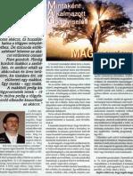 MAG program - Géczy Gábor