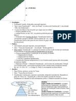 Constitucional - 20110507