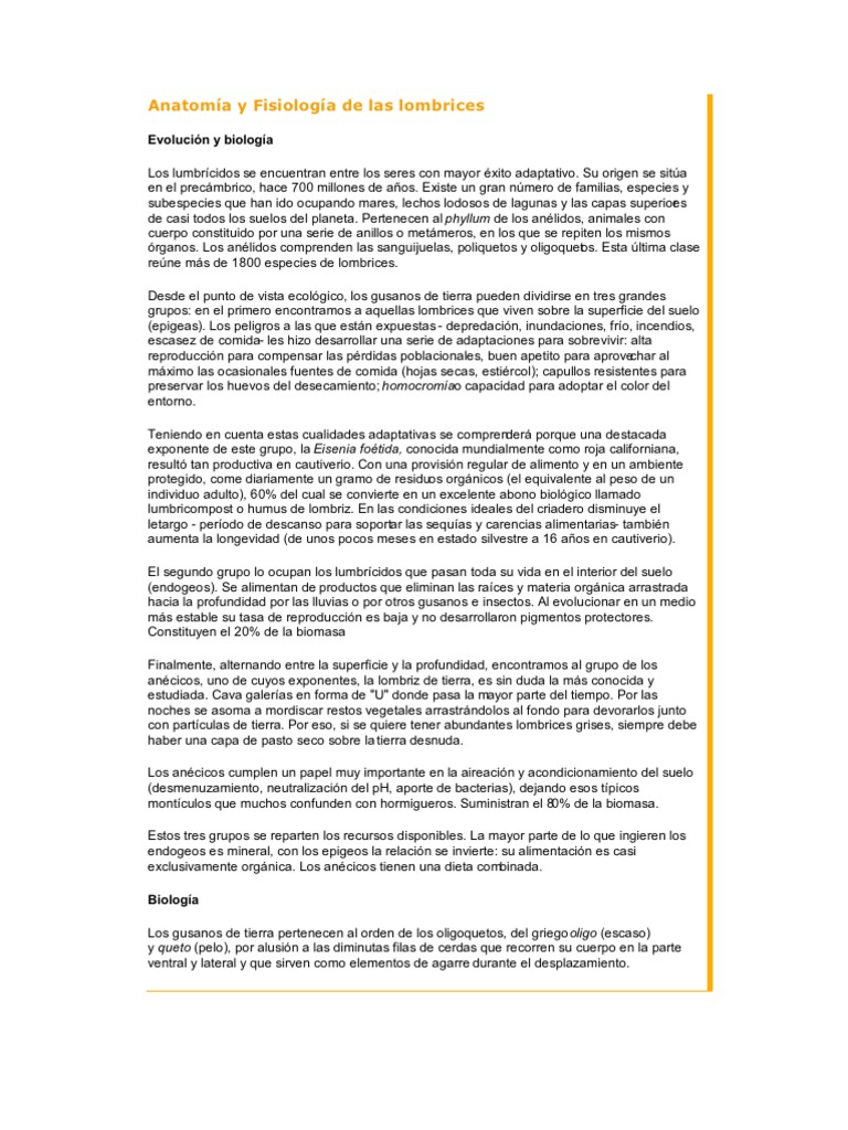Dorable Anatomía Lombriz De Tierra Viñeta - Imágenes de Anatomía ...