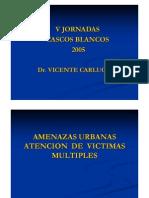 Documento voluntariado VI