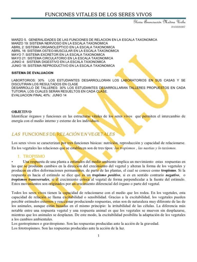 LAS FUNCIONES DE RELACIÓN211