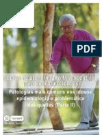 idosos4