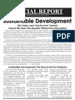 ICLEI Special Report Sust Develop