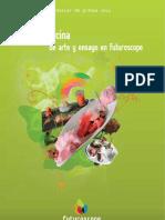 Prensa Futuroscope Cocina Molecular 2011